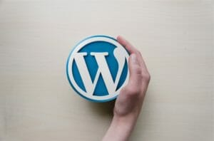 WordPress and Plugin Compatibility For Themes