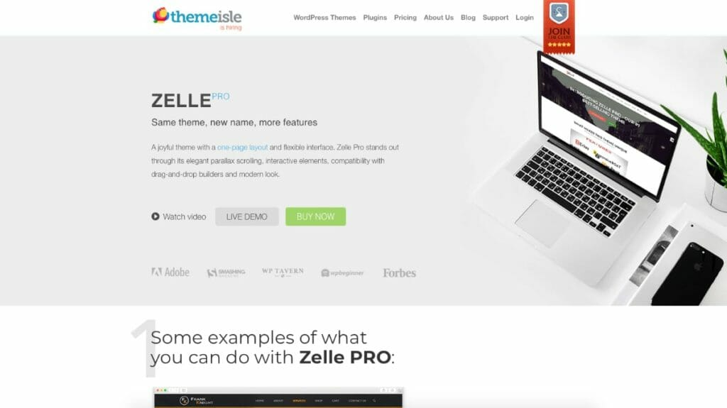 Zelle Pro WordPress Theme From Themeisle