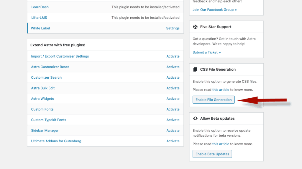 Enable CSS File Generation For Astra WordPress Theme